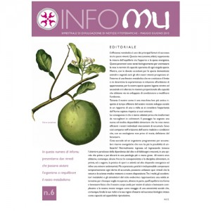 Copertina INFOMU 6 copy